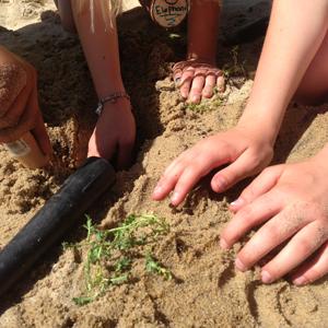 Kids Hands Planting